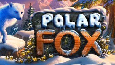 слот Polar Fox