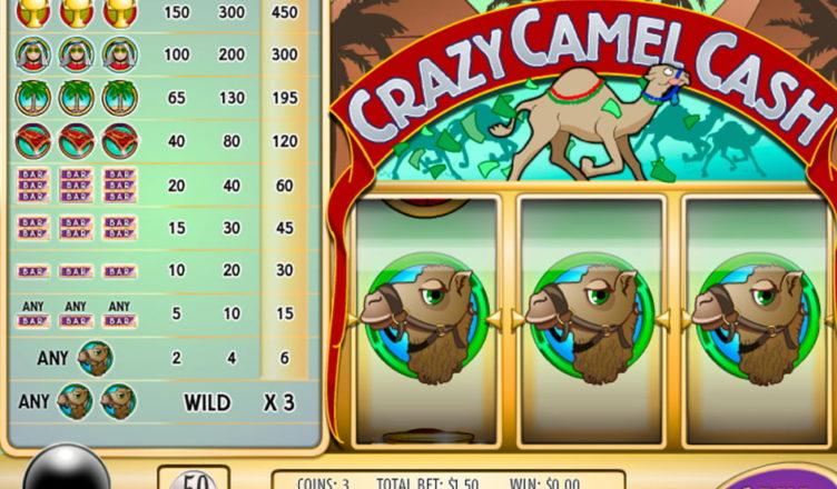 Crazy Camel Cash